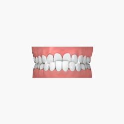หมอฟันแถวราม1